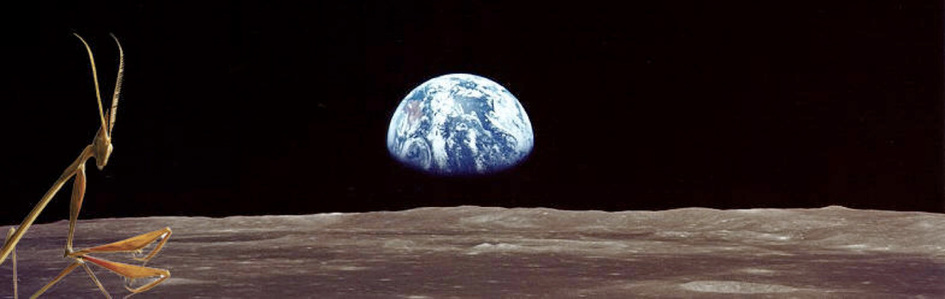 Earth Rise as seen from the Moon. Future Primal by Louis G. Herman